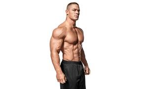 Обои фон белый, WWE, бодибилдер, пресс, WWE SmackDown, торс, актер, рестлер, bodybuilder, Джон Сина, abs, muscle, ...