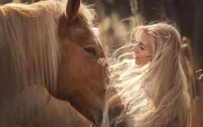 Картинка морда, девушка, лицо, настроение, конь, лошадь, грива, длинные волосы, Анюта Онтикова