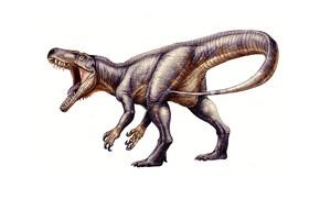 Картинка динозавр, хищник, хвост