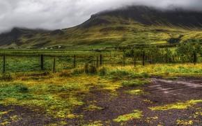 Картинка зелень, трава, облака, горы, туман, поля, HDR, Исландия, кусты, плантации, ограждения, участки, Thorsmork National Park