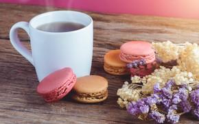 Картинка цветы, чай, пирожные, Макароны