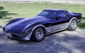 Картинка Corvette, Chevrolet, 1978, Stingray