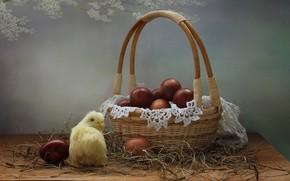 Картинка корзина, яйца, весна, пасха, натюрморт, цыпленок