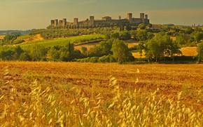 Картинка поле, пейзаж, стена, башня, Италия, Тоскана, Монтериджони