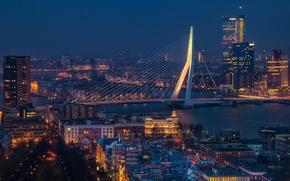 Обои Netherlands, blue hour, cityscape, Rotterdam, Erasmus Bridge, urban scene, Erasmusbrug