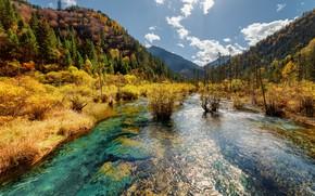Обои парк, горы, деревья, Jiuzhaigou, заповедник, Китай, Цзючжайгоу, речка, лес, солнце, небо, осень, облака