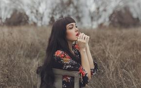 Картинка поле, девушка, лицо, руки, платье, стул