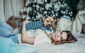 Картинка взгляд, девушка, настроение, собака, постель, пёсик, йоркширский терьер, Сергей Шавин, Sergey Shavin