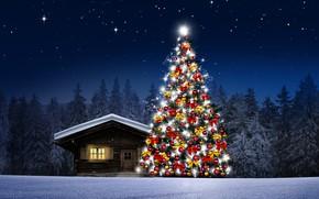 Картинка зима, снег, украшения, снежинки, шары, елки, Новый Год, Рождество, happy, Christmas, night, winter, snow, Merry …