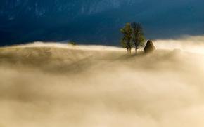Картинка горы, природа, туман, поля, утро