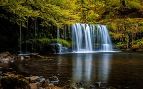 Картинка лес, деревья, природа, водопад