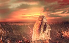 Картинка трава, девушка, облака, закат, настроение, луг