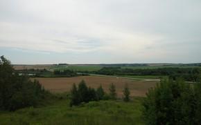 Картинка дорога, поле, небо, трава, деревья, озеро