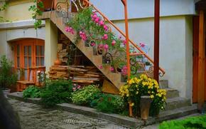 Картинка Цветы, Лестница, Дом, Flowers, Colors, Двор