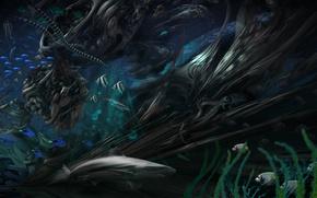 Картинка змеи, рыбы, водоросли, акула, спрут, turbulence