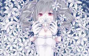 Картинка взгляд, цветы, девочка, IdolM@ster