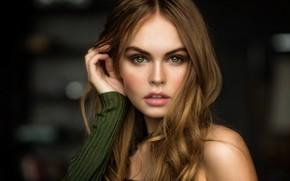 Картинка взгляд, поза, модель, портрет, макияж, прическа, шатенка, красотка, боке, Анастасия Щеглова, Mark Prinz, Anastasia Scheglova