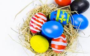 Картинка праздник, яйца, пасха, гнездо, солома, Easter, eggs