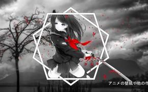 Картинка дерево, аниме, лепестки, геометрическая фигура, аниме девушка, madskillz, мэдскиллз