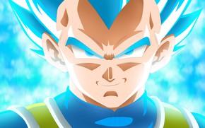 Картинка Blue, Super Saiyan, Vegeta Dragon Ball