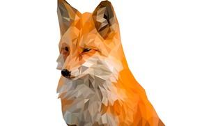 Обои фон, животное, треугольники, лиса