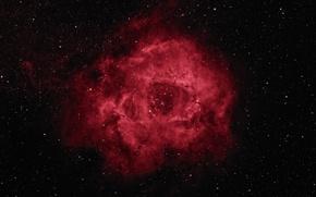 Обои Rosette Nebula, звезды, космос, красота