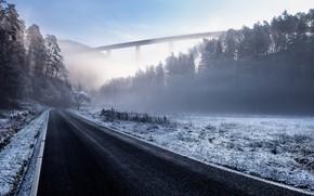 Картинка зима, дорога, лес, мост, Германия, Germany, Trier, Трир, Biewerbachtalbrücke