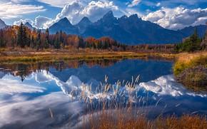 Картинка горы, озеро, Вайоминг, США, Титон