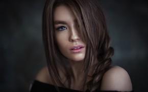 Картинка взгляд, портрет, макияж, прическа, шатенка, красотка, фотосессия, косичка, боке, Ali Falak