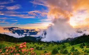 Картинка облака, природа, утро