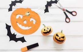 Картинка праздник, мышь, тыква, хэллоуин, ножницы