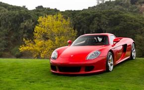 Картинка Porsche, Red, Carrera