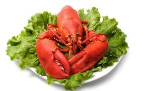 Картинка листья, омар, клешни, салат, seafood, морепродукт