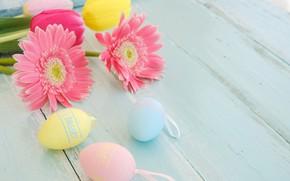 Картинка цветы, корзина, яйца, весна, colorful, Пасха, герберы, wood, pink, flowers, spring, Easter, eggs, decoration, Happy, …