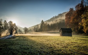 Обои поле, дом, утро, туман