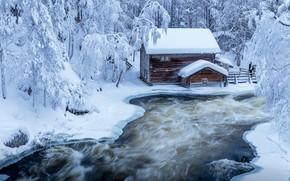Обои зима, лес, деревья, пейзаж, природа, дом, парк, река, лёд, ели, Финляндия, Jari Ehrström