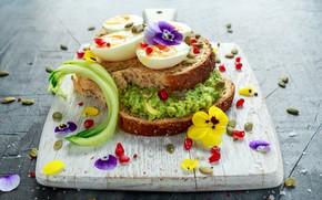 Картинка еда, яйца, хлеб, анютины глазки, бутерброд, сэндвич, разделочная доска