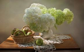 Картинка лето, цветы, яблоки, натюрморт, гортензия