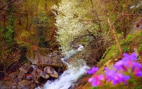 Картинка Весна, Водопад, Камни, Spring, Цветение, Waterfall, Flowering