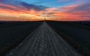Обои закат, дорога, дерево