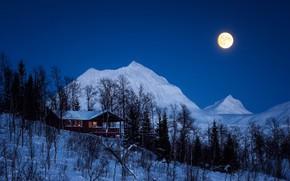 Картинка зима, лес, небо, снег, деревья, горы, ночь, луна, домик