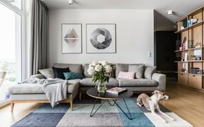 Картинка комната, Talosi Apartment, гостиная, интерьер