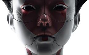 Картинка cinema, robot, android, mecha, woman, movie, face, assassin, asian, film, head, japanese, oriental, asiatic, Ghost …