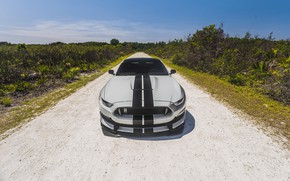 Обои Ford, Mustang, Cobra, Front, Face, Silver