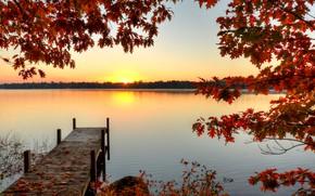 Обои лес, река, ветки, солнце, причал, осень, листья, рассвет, деревья