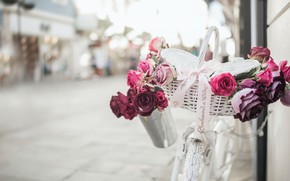 Картинка цветы, велосипед, улица, корзина, романтика, розы