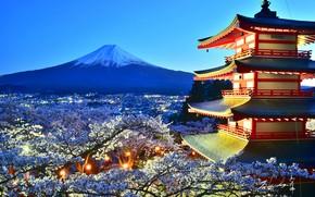 Картинка дом, дерево, гора, вулкан, цветение
