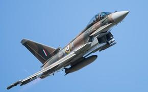 Обои небо, летит, Eurofighter Typhoon, боевой самолёт