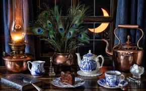 Обои стиль, чайник, перья, лупа, окно, чашка, сахар, лампа, тортик, книга, павлиньи перья, натюрморт, месяц