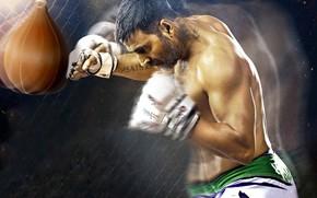 Обои cinema, film, sport, Brothers, boxe, Akshay Kumar, movie, fighter, gloves, man